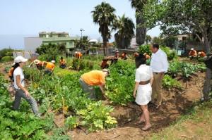 Agricultura-Ecológica