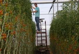 La colaboración, clave para ganar en competitividad agraria