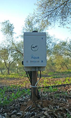 Dispositivo de Seguimiento BrioAgro Aqua Olivos