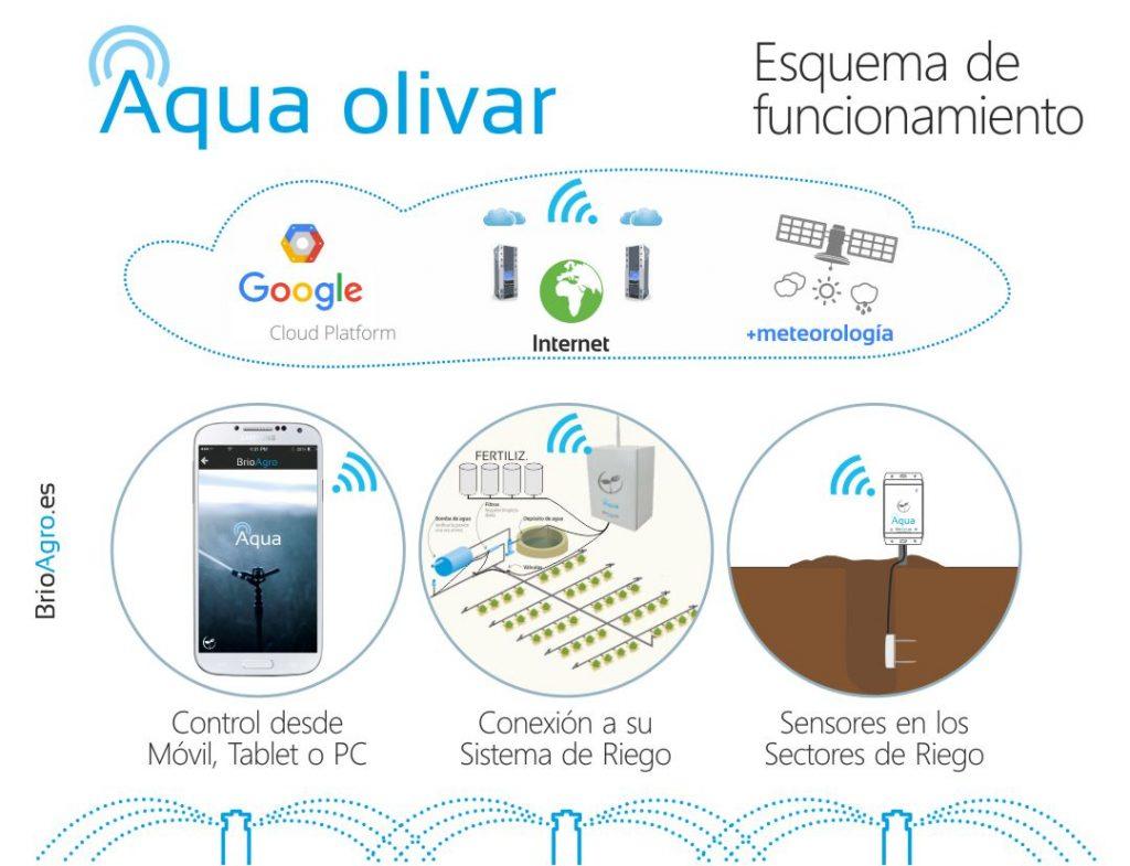 Esquema de funcionamiento del Riego Inteligente de BrioAgro Aqua para olivar