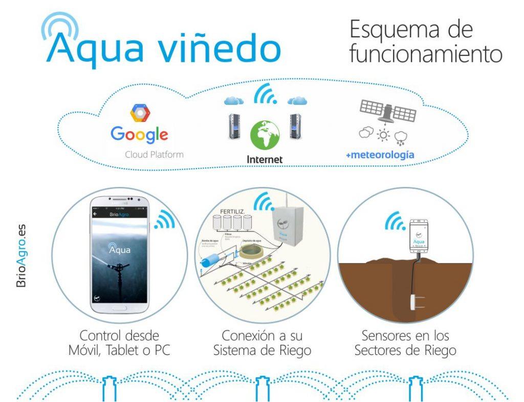 Esquema de funcionamiento del Riego Inteligente de BrioAgro Aqua para viñedo