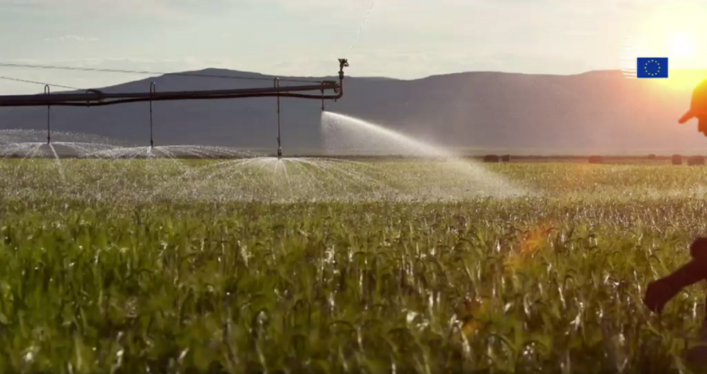 Using reclaimed water for agricultural irrigation is good for the environment
