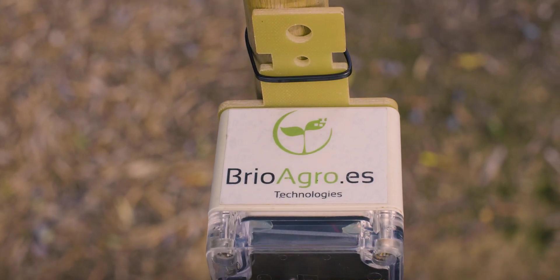BrioAgro-solar